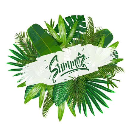 Tropical leaves around the sign summer on white background. Pattern nature. Vector art isolate.