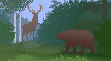 Bear and deer in the forest. Vector color illustration.