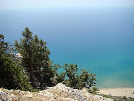 seaview: seaview