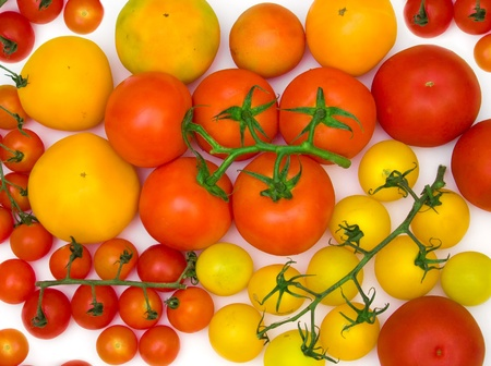 scattering: tomatoes scattering