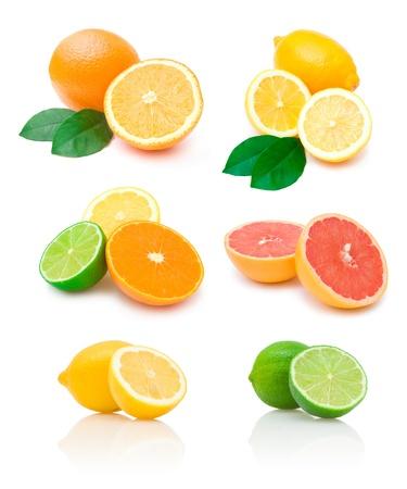 Zitrusfrüchte-Sammlung Standard-Bild - 12670876