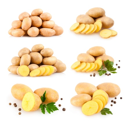 collection of 6 potato images