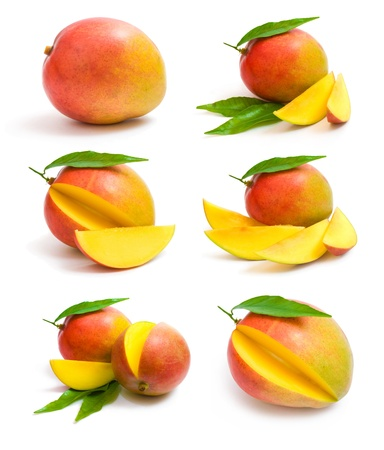 マンゴー コレクション 写真素材