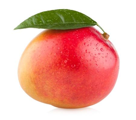 Mango isolato su sfondo bianco Archivio Fotografico - 20300897