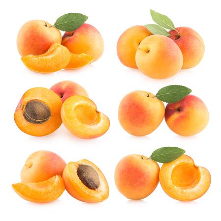 collectie van 6 abrikoos beelden