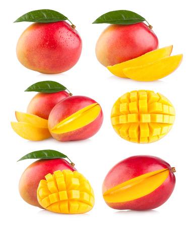 6 マンゴーのイメージのコレクション