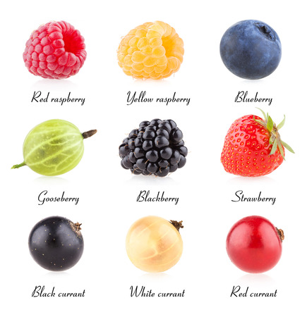 collection of 9 berry images