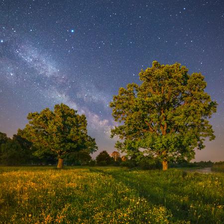 milky: Starry night landscape  Stock Photo
