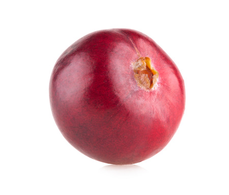 cranberry: cranberry Stock Photo