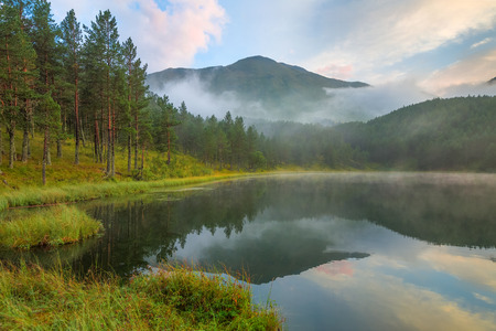 fog forest: Foggy day at mountain lake