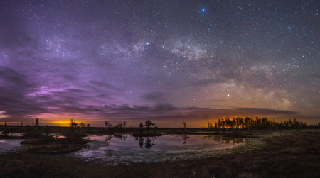 swamp: Starry night at a swamp Stock Photo