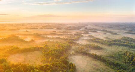 Foggy morning at Zvanets marsh (unique fen wetland in Belarus) Imagens
