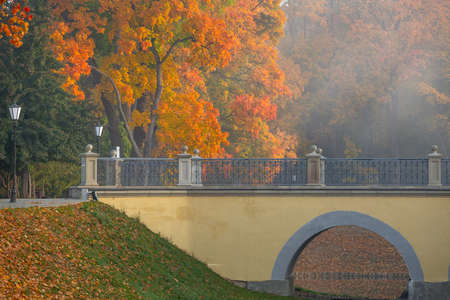 Golden autumn near the castle in Niasvizh, Belarus Standard-Bild