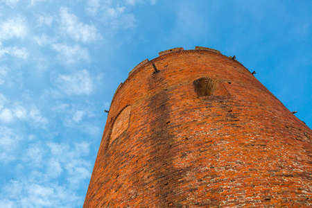 Old Tower of Kamyenyets, Belarus Standard-Bild