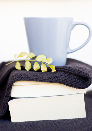 Autumn layout with hot tea with a lemon on a sweater and dry leaves. Brown background.Brown background. Reklamní fotografie
