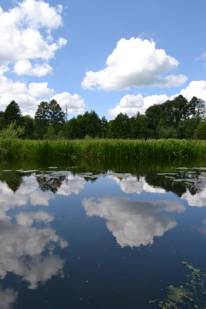 Blue sky and white clouds reflected in the river in the early morning in the summer Reklamní fotografie
