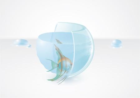 zero gravity: Fish in magic aquarium