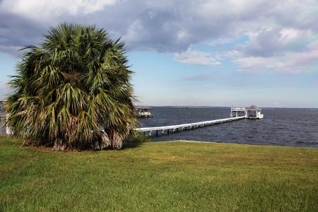 sunshine state: Florida landscape
