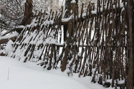 lath: lath fence