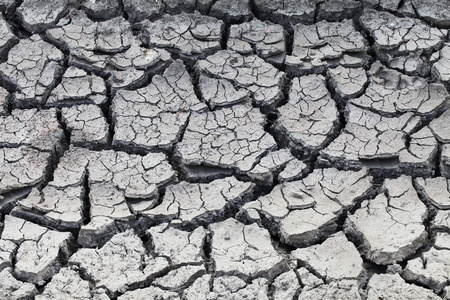 starvation: a very dry cracked soil on a field Stock Photo