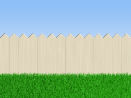 paling: Wooden fence