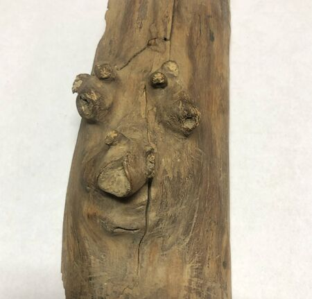 a piece of wood with a human face Stockfoto