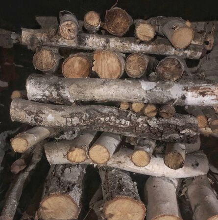 logs stacked in the fireplace in modern house Stockfoto