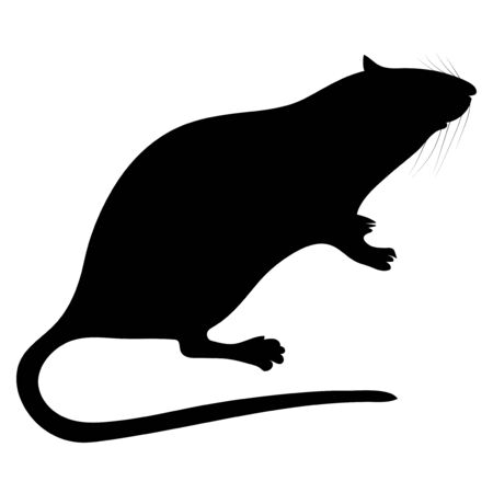 silhouette of the rat on white background Vector Illustration