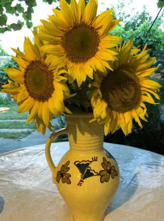 Bouquet of sunflowers in a clay vase