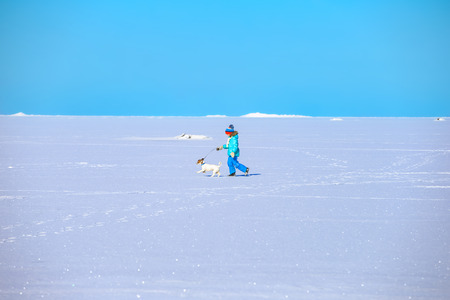 The Gulf of Finland. The icy plain covered with snow. Sunny day. A girl on a walk with a dog.