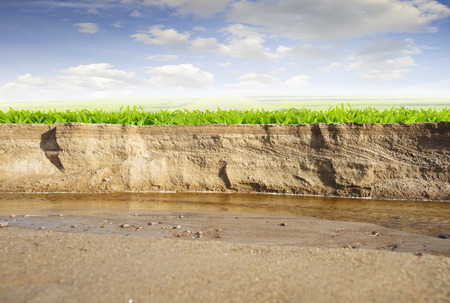 Natural cross section of a sandy river bank overlooking a sunny field.