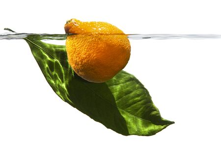 Mandarin and leaf of tangerine tree lit by the sun, under water