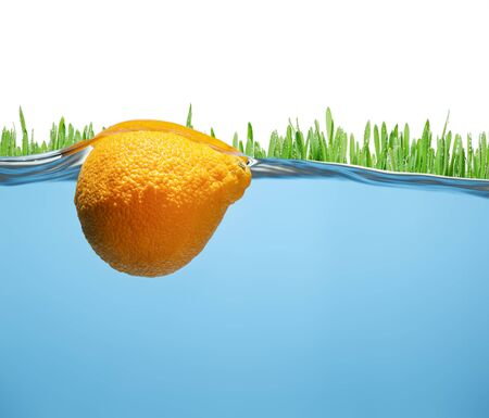 Grass with dew drops and tangerine submerged underwater