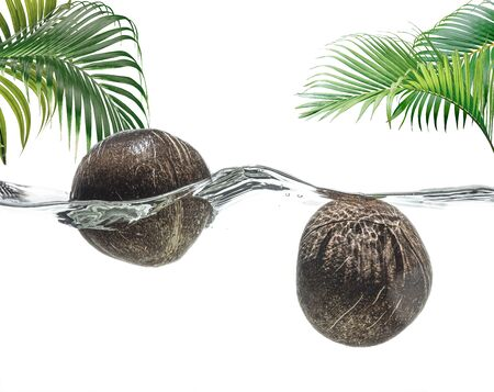 Two coconuts in the water against a tropical landscape