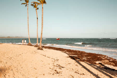 Caribbean landscape: morning on the Dominican coast of the Atlantic Ocean Stok Fotoğraf