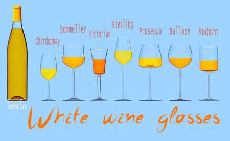 An illustration of the main types of white wine glasses. 3D rendering