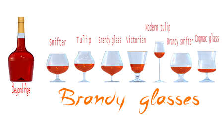 An illustration of the main types of brandy glasses. 3D rendering