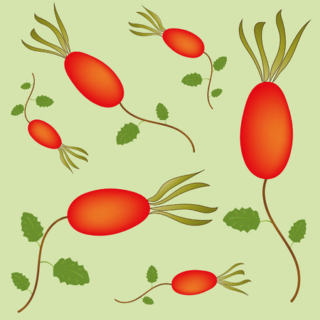 Seamless pattern with rosehip berries Vector