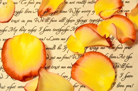 Love Letter with Rose Petals photo