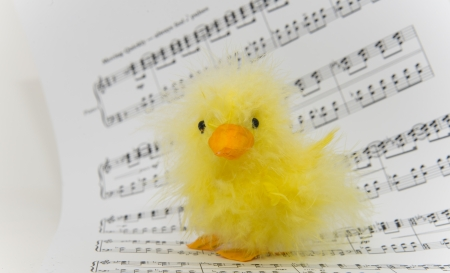 Chicken with Music Notes photo
