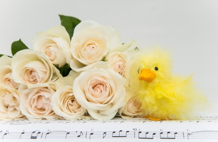 Bouquet of Roses with Easter Chicken photo