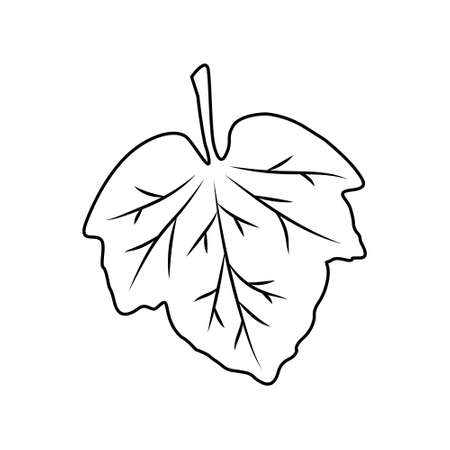 Leaf icon. Isolated black outline on white background. Vector illustration.