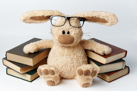 A toy rabbit in glasses sits near piles of books.