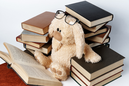 A soft toy rabbit in glasses sits in piles of books and reads a book. Фото со стока
