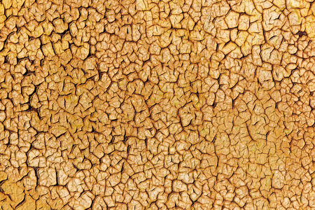 Background texture of rusty metal with gold cracked paint.