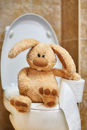 Soft stuffed rabbit with toilet paper in the toilet. The concept of digestive problems.