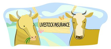 Vector illustration of two cows on the background of inscription livestock insurance .