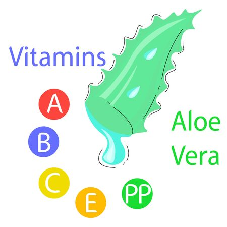 Vector illustration of aloe leaf from which juice oozes.