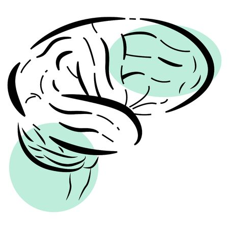 Vector illustration of an isolated brain. Uneven lines and heel colors are used Illustration