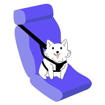 Vector isolated illustration with dog in car, which is securely fastened with special seat belts.